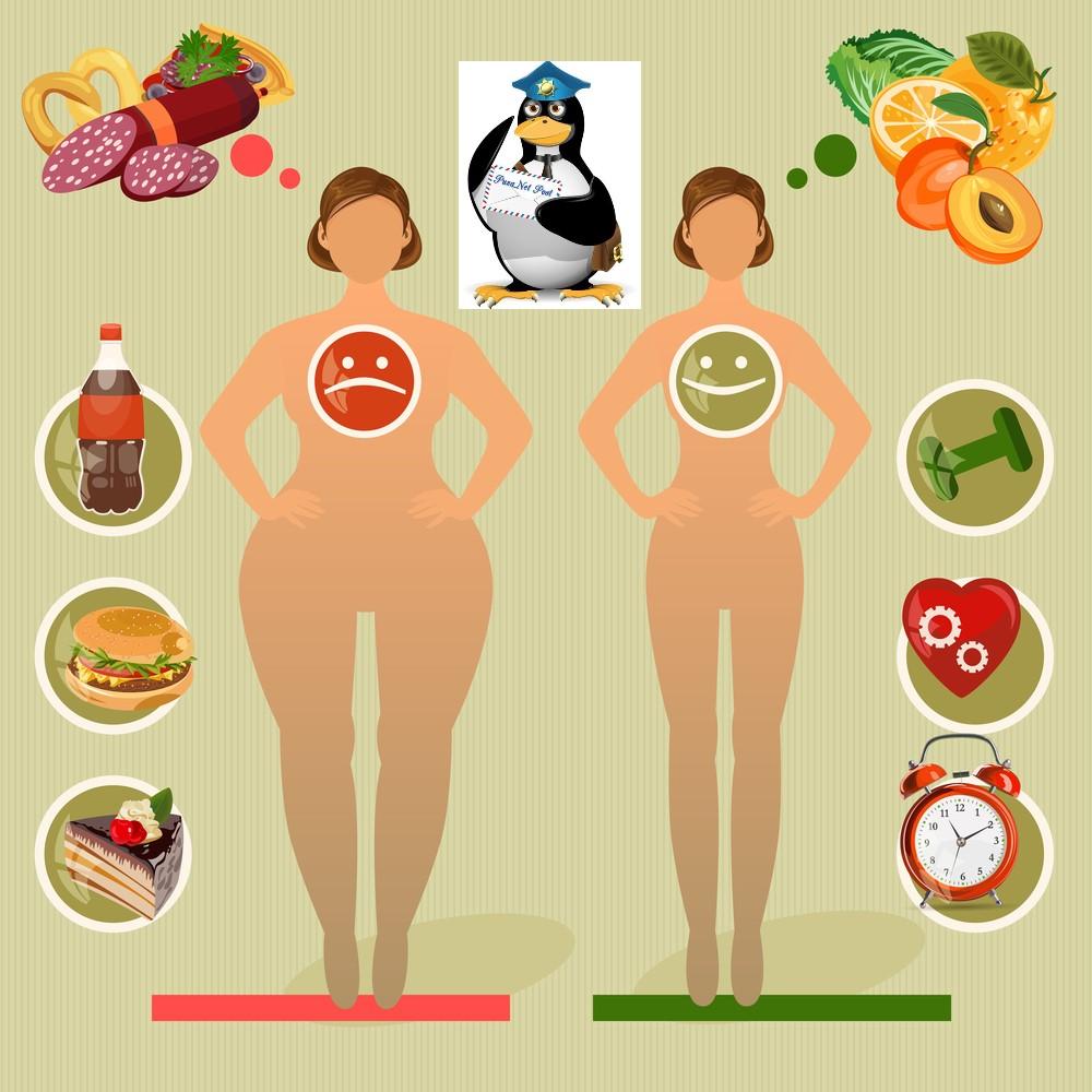 почему я не могу похудеть?