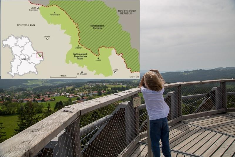 баварский лес национальный парк